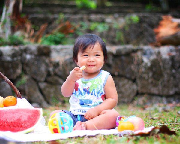 picnic, baby, eating-2659208.jpg